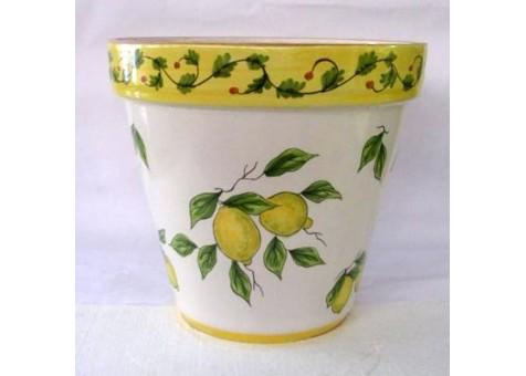 Vaso pianta limoni fondo bianco ceramica artistica for Limoni in vaso